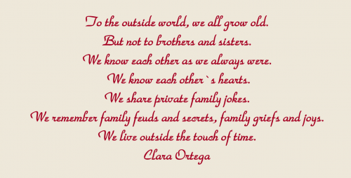 Loss Of Brother Quotes Mesmerizing Death Of An Adult Brother Or Sister